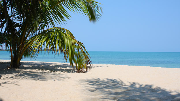 Belize In Yourself (and Hit Your Annual Sales Goals)!